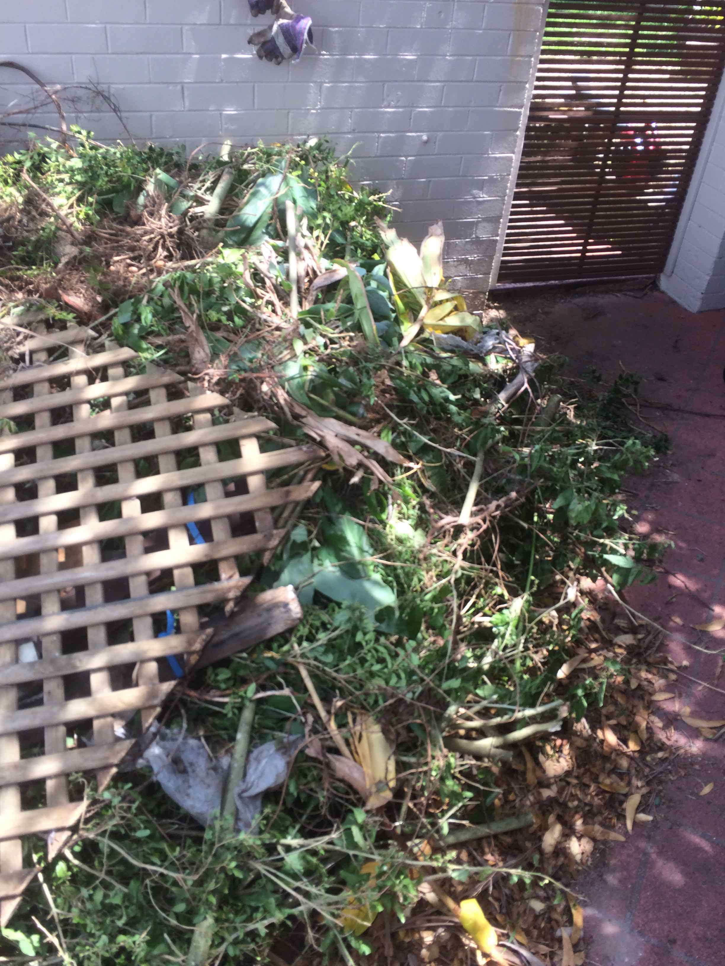 Bronte Garden Waste Rubbish Removal